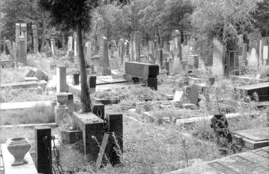 ch05_02_Jewish_Cemetery_Lodz_1990-1200